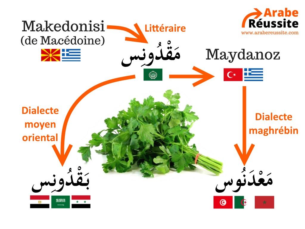 L'origine du mot persil en arabe